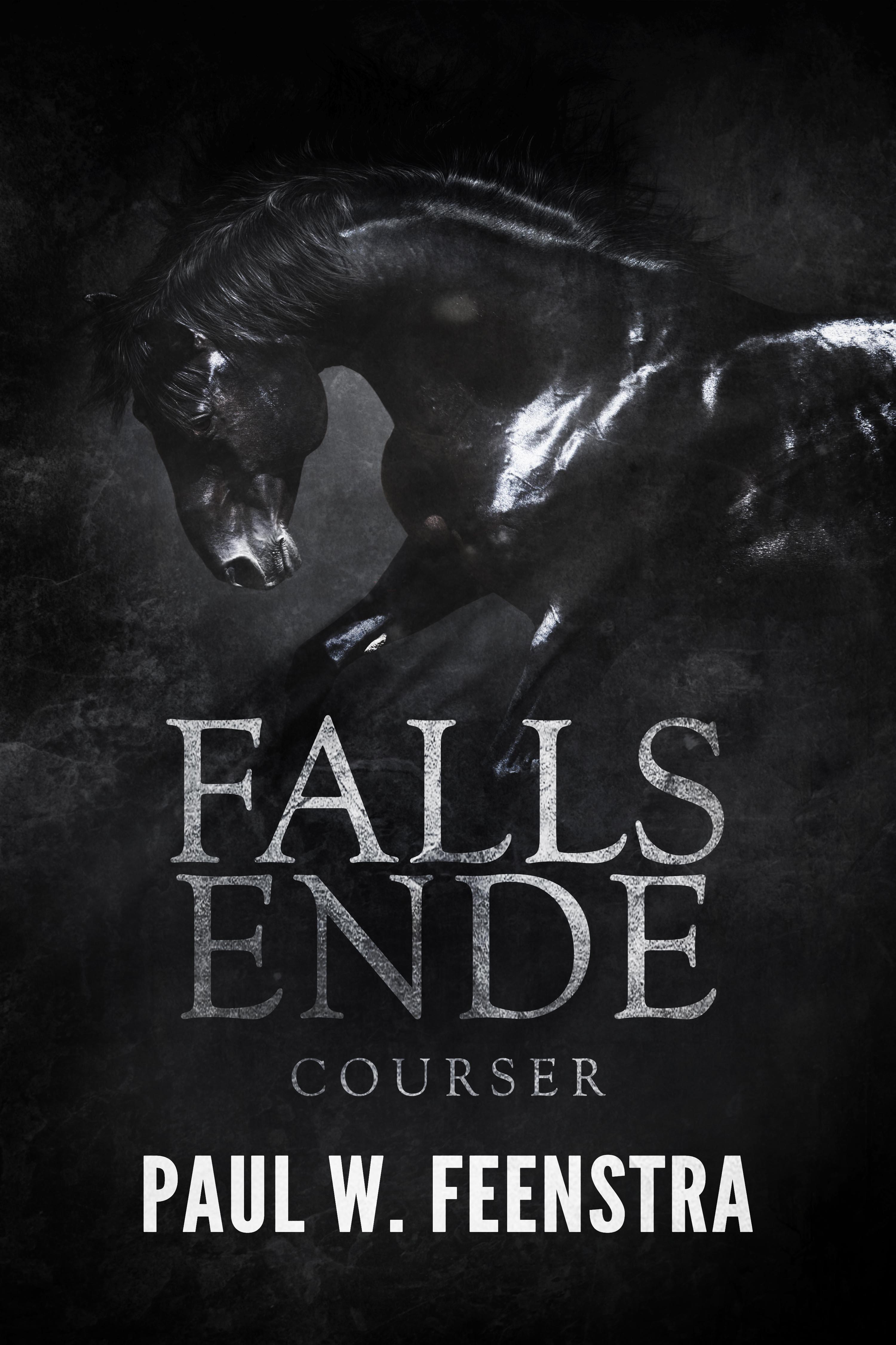 2 -Falls Ende - Courser ebook 2